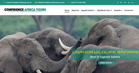 Confidence Africa Tours